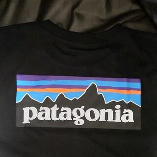 パタゴニア(patagonia)の【半袖 L】patagonia パタゴニア Tシャツ パタゴニア(Tシャツ/カットソー(半袖/袖なし))