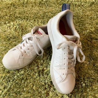 アディダス(adidas)の【adidas】アディダス  adidas neo ホワイト(スニーカー)