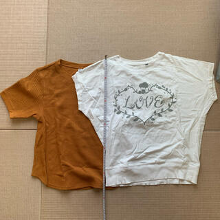 UNIQLO - Tシャツ2枚
