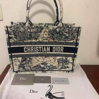 ディオール(Dior)のDIOR BOOKTOTE スモールバッグ ブックトート(トートバッグ)