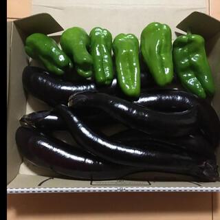 長ナス ピーマン コンパクト いっぱい 野菜 詰め合わせ(野菜)