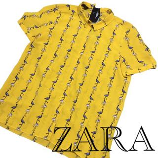 ZARA - ZARA BASIC ザラ ベーシック レディース トップス シャツ tシャツ