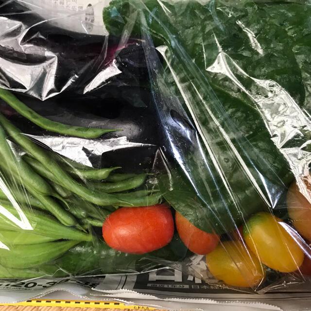 無農薬減農薬野菜セット① 食品/飲料/酒の食品(野菜)の商品写真