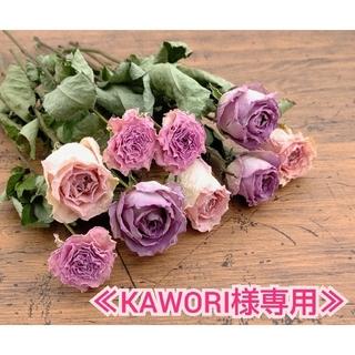 【KAWORI様専用】スタンダード 薔薇ドライフラワーセット No.542(ドライフラワー)