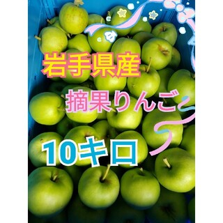 岩手県産 摘果りんご 10キロ(フルーツ)