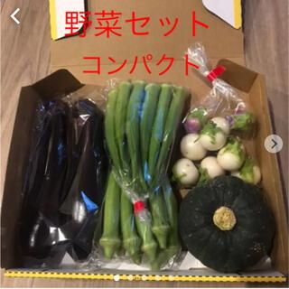 野菜セット コンパクト