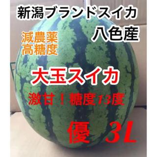 7/30迄!激甘!新潟ブランドスイカ 八色産 大玉スイカ 優品 3L 8kg(フルーツ)