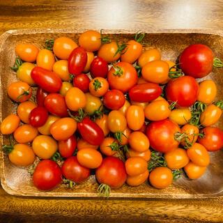 ミニトマトMIX詰め合わせ 1.1kg 有機無農薬栽培(野菜)