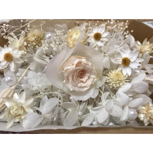 プリザーブドフラワー花材 ドライフラワー花材 ハンドメイドのフラワー/ガーデン(ドライフラワー)の商品写真