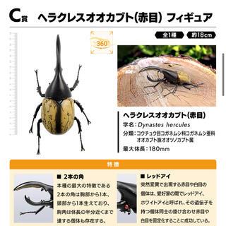 BANDAI - 一番くじ昆虫 世界の昆虫だいしゅうごう C賞 ヘラクレスオオカブト 赤目