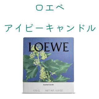 LOEWE - LOEWE  ロエベ アイビーキャンドル 170g  新品未開封