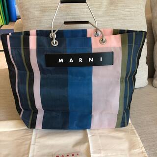 Marni - マルニ フラワーバック ストライプ