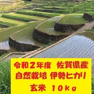 玄米10kg 【完全自然栽培の美味しいお米!】令和2年度佐賀県産!「伊勢ヒカリ」