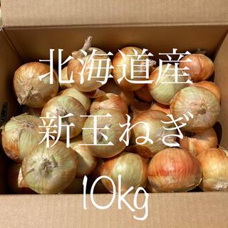 10kg  北海道 新玉ねぎ