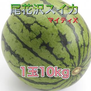 73001 尾花沢スイカ マイティX 1玉 10kg前後 訳あり 西瓜(フルーツ)