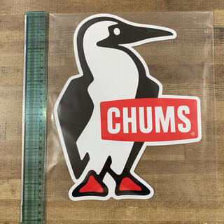 チャムス(CHUMS)のCHUMS 存在感抜群、ブービーバードのA4サイズ ステッカー(ビッグサイズ)(その他)