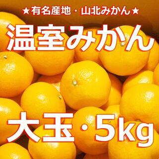 【超大玉 温室みかん 5キロ】★冷やし・冷凍みかんに!★山北みかん★フルーツ蜜柑