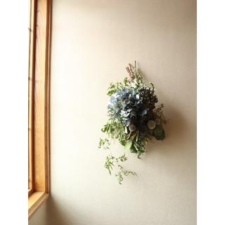 藍色紫陽花とアンティーク紫陽花の涼しげなスワッグ。ドライフラワースワッグ。(ドライフラワー)