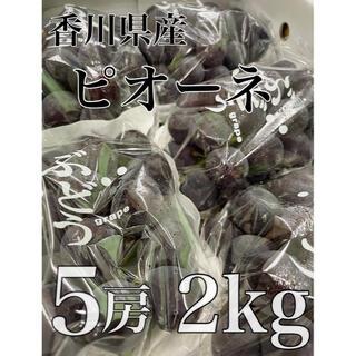大量入荷の為格安出品!!香川県産【ピオーネ】5房 2kg!(フルーツ)