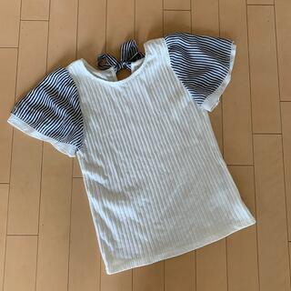 マジェスティックレゴン(MAJESTIC LEGON)の半袖 ブラウス(シャツ/ブラウス(半袖/袖なし))