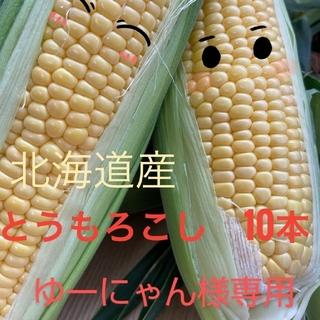 北海道産とうもろこし【10本入り】(野菜)