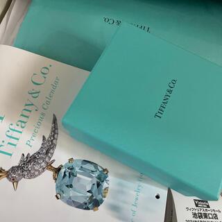 Tiffany & Co. - ティファニー ネックレス インフィニティ