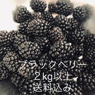 ブラックベリー 2kg 冷凍 ジャムや果実酒に(フルーツ)