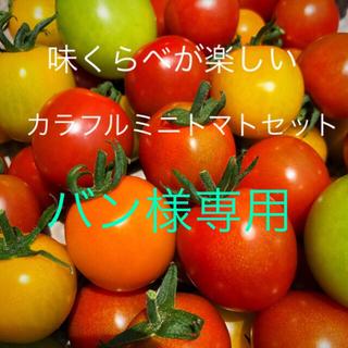 バン様専用ミニトマトカラフルMIX3キロ