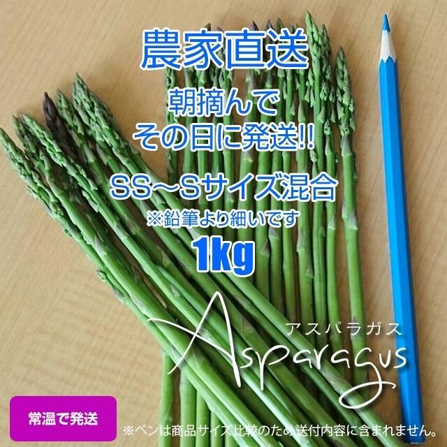 細アスパラガス 1kg 採りたて野菜 食品/飲料/酒の食品(野菜)の商品写真