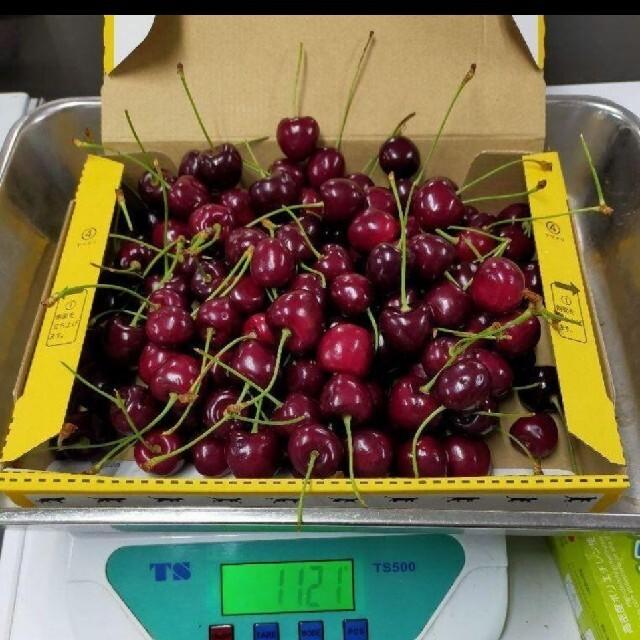 アメリカ産のアメリカンチェリー1kg 10.5 7月31日入荷 食品/飲料/酒の食品(フルーツ)の商品写真