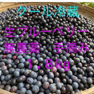 今が旬です💝全国配送中完熟生ブルーベリー1.8kg クール冷蔵送料込み(フルーツ)