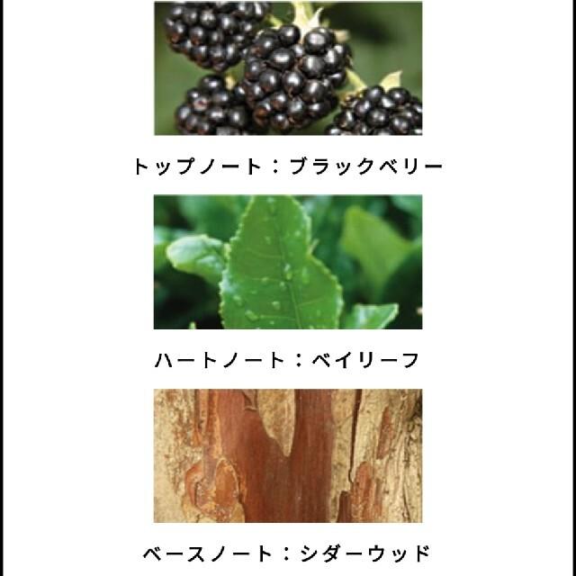 Jo Malone(ジョーマローン)の【新品】ジョー マローン ロンドン  ブラックベリー&ベイコロン 30ML コスメ/美容の香水(ユニセックス)の商品写真