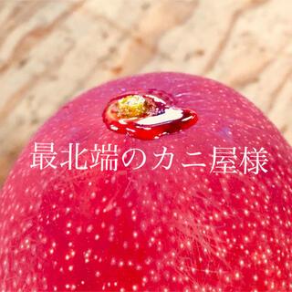 宮崎県産 完熟マンゴー2kg ミニマンゴー 詰め合わせ 2kg(フルーツ)