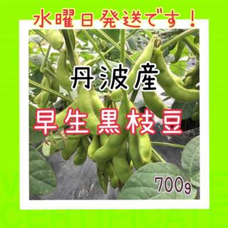 丹波産❗️早生黒枝豆700g入(野菜)