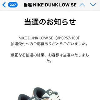 NIKE - nike dunk low ナイキ ダンク ロー jordan supreme