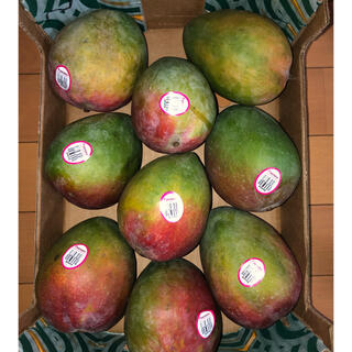 コストコ - 【ケント種】メキシコ産 マンゴー 9玉