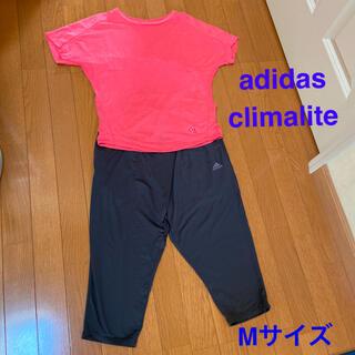 adidas - 【アディダス】climalite  Tシャツ&トレーニングパンツ Mサイズ