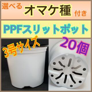 PPFスリットポット ポリポット 20個 NI-134 選べるオマケ種付き(プランター)