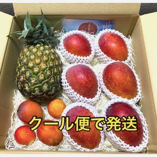 沖縄県産 ◆ マンゴー & ゴールドバレル 詰め合わせセット ◆ (ご家庭用)(フルーツ)