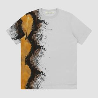 ディオール(Dior)の新品未使用!1017ALYX9SM 2021ss グレーパイソン柄Tシャツ(M)(Tシャツ/カットソー(半袖/袖なし))
