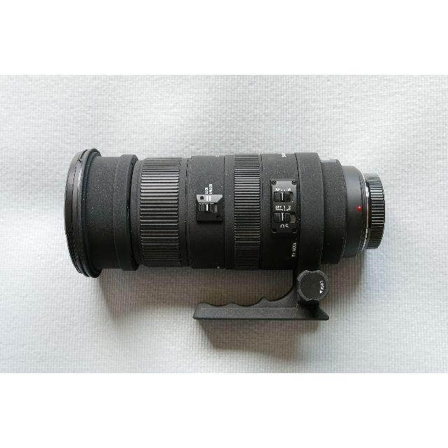 SIGMA(シグマ)のシグマAPO 50-500mm F4.5-6.3 DG OS HSM ソニー用 スマホ/家電/カメラのカメラ(レンズ(ズーム))の商品写真