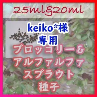 夏季限定【健康成分スルフォラファン含有品種】ブロッコリースプラウト 種 40ml(野菜)