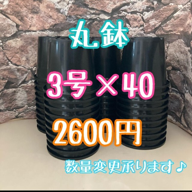◎40個◎ 丸鉢 3号 / 3寸 / 9cm プラ鉢 黒 ブラック ハンドメイドのフラワー/ガーデン(プランター)の商品写真