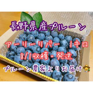 3 長野県産プルーン アーリーリバー1キロ プルーン農家よりお届け(フルーツ)