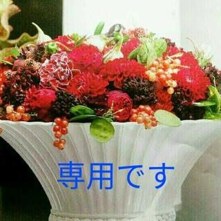 まいみ様★専用です❣(野菜)