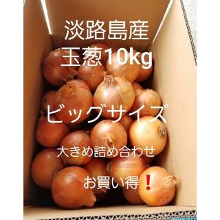 めっちゃ甘い‼️淡路島産玉葱ビックサイズ10kg、農家直送です❗