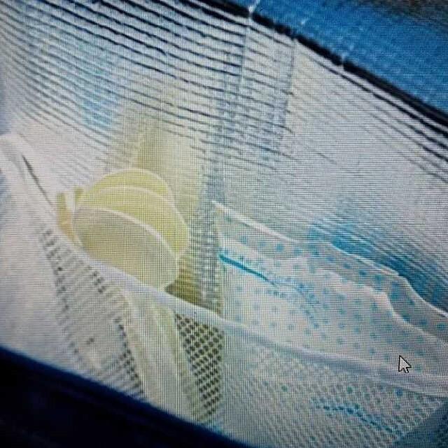 Lisa Larson(リサラーソン)のリサラーソン 大容量保冷バッグ エンタメ/ホビーのエンタメ その他(その他)の商品写真