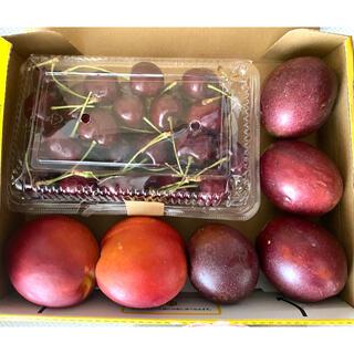 【フルーツ詰め合わせ】アメリカンチェリー ネクタリン パッションフルーツ