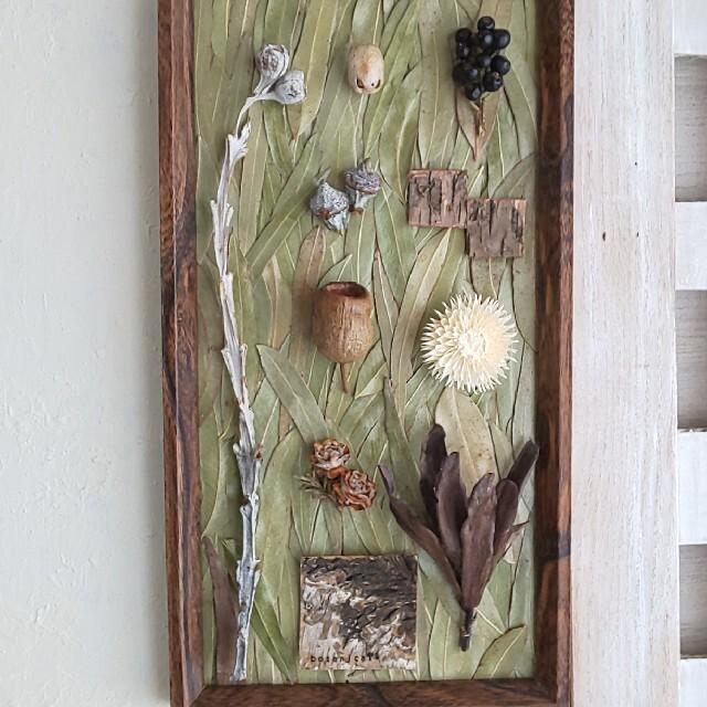 専用*ドライフラワー  植物標本 (ユーカリ) ハンドメイドのフラワー/ガーデン(ドライフラワー)の商品写真