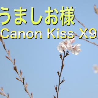 Canon KissX9 初心者向け☆彡